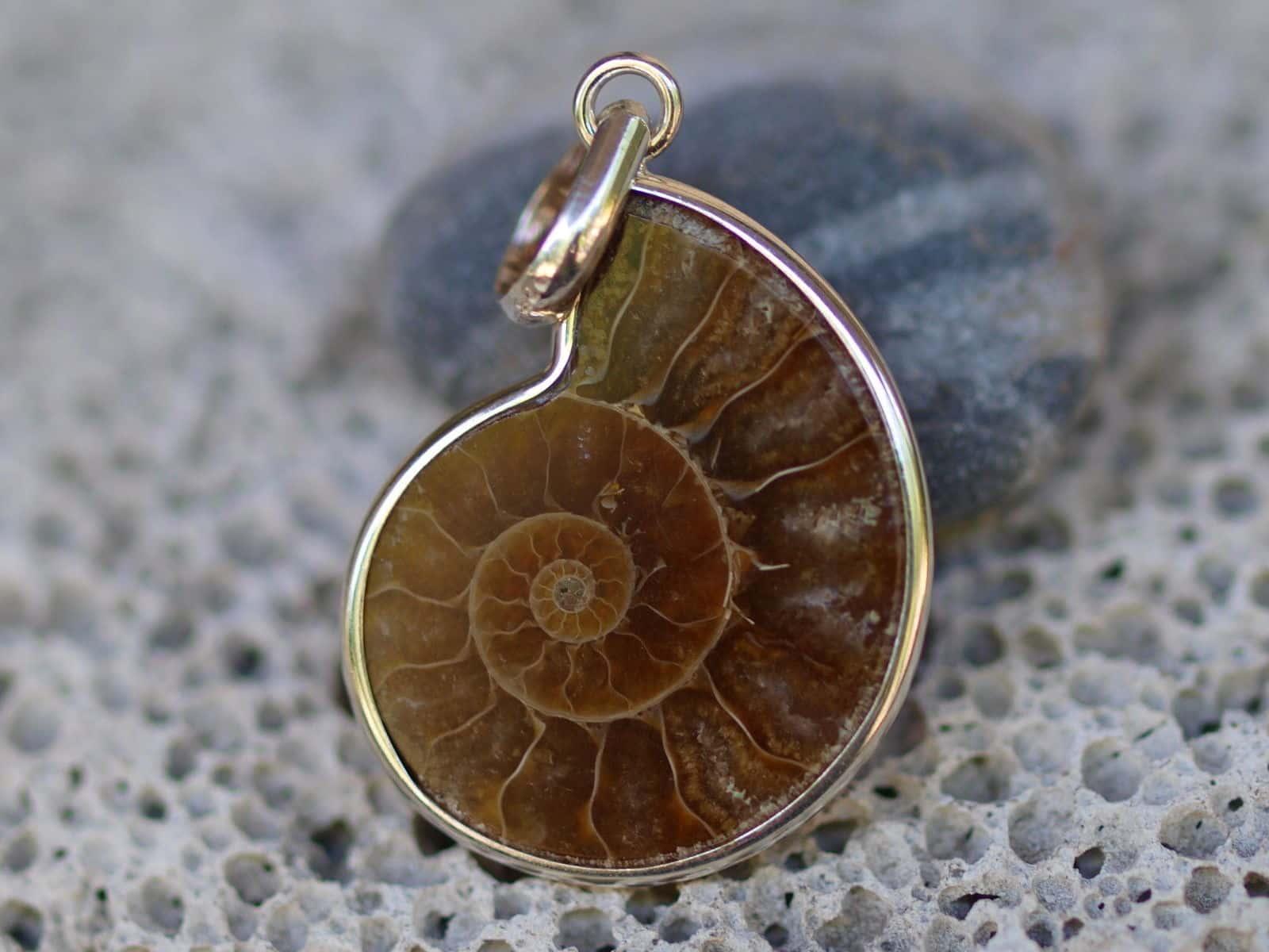 Anhänger Ammonit Fossil Silber 925